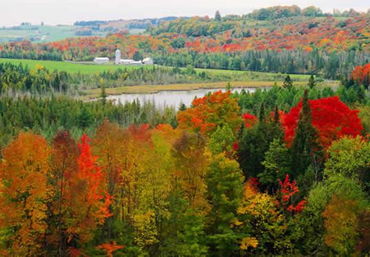 Foilage Season in Vermont   EYEONCITRUS.COM