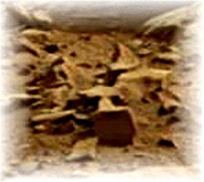 3 FIGURES ON MARS   eyeoncitrus.com